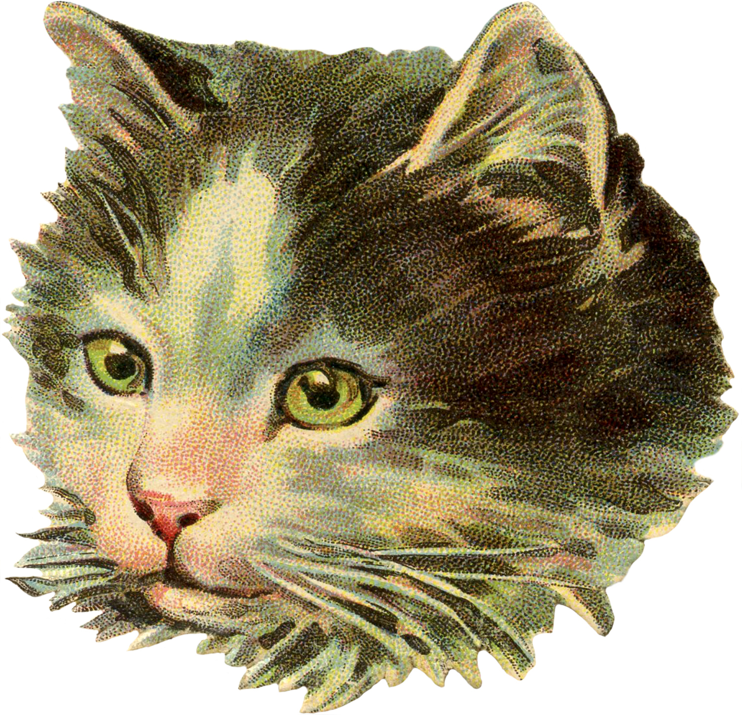 Classic Retro Illustration: Vintage Cat Illustration