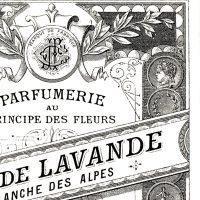 Antique-Perfume-Label-GraphicsFairy-thumb