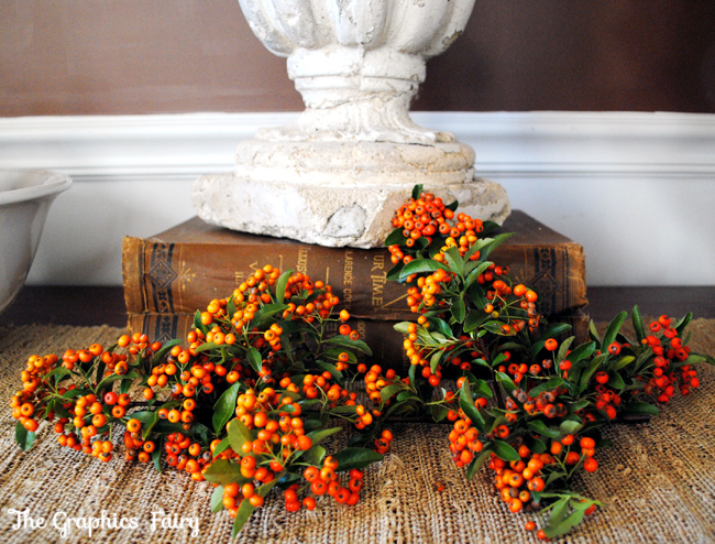 Fall Orange Berries
