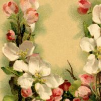 Floral-Alphabet-Card-Klein-GraphicsFairy-thumb