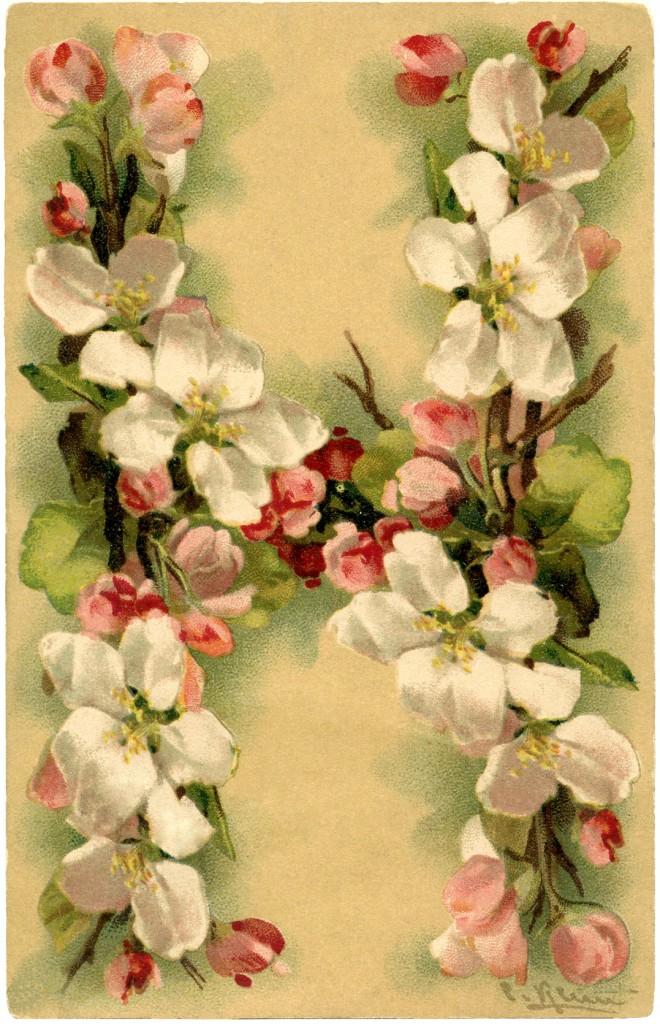 Floral Alphabet Card Klein H