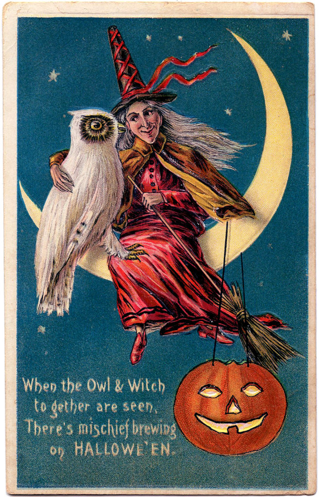 Halloween Witch with Owl Image