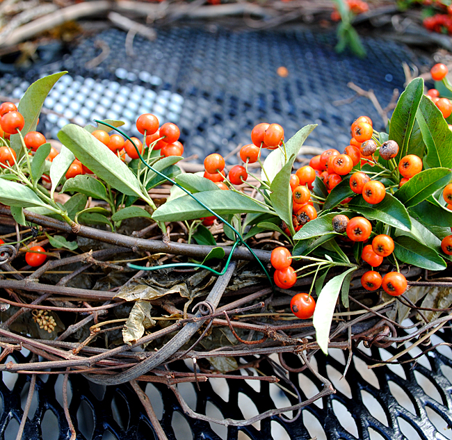 Make a pyracantha berries Wreath