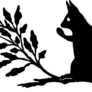 Squirrel Silhouette Image