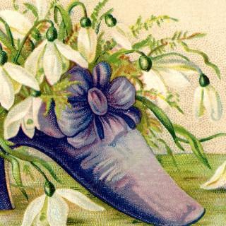 Victorian Shoe Image – Flowers