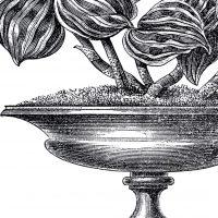 Vintage-Garden-Urn-Image-GraphicsFairy-thumb
