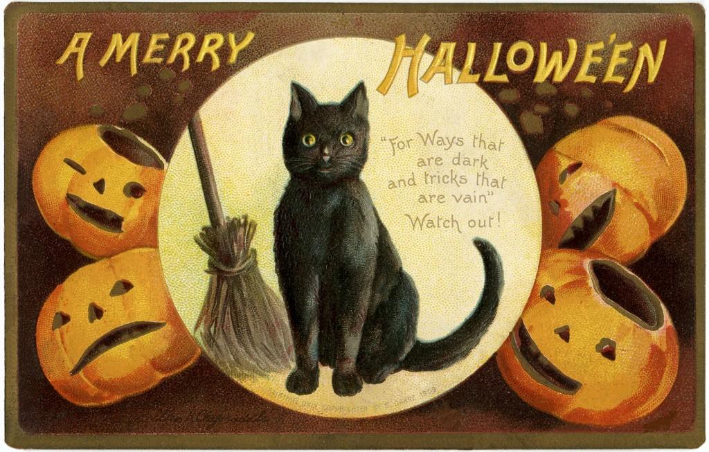 Vintage Halloween Cat Image