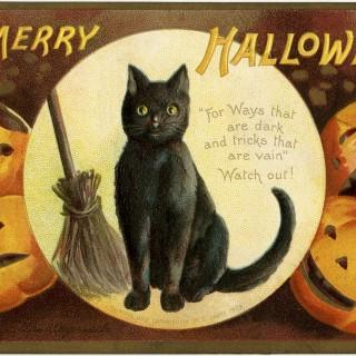 Cute Vintage Halloween Cat Image