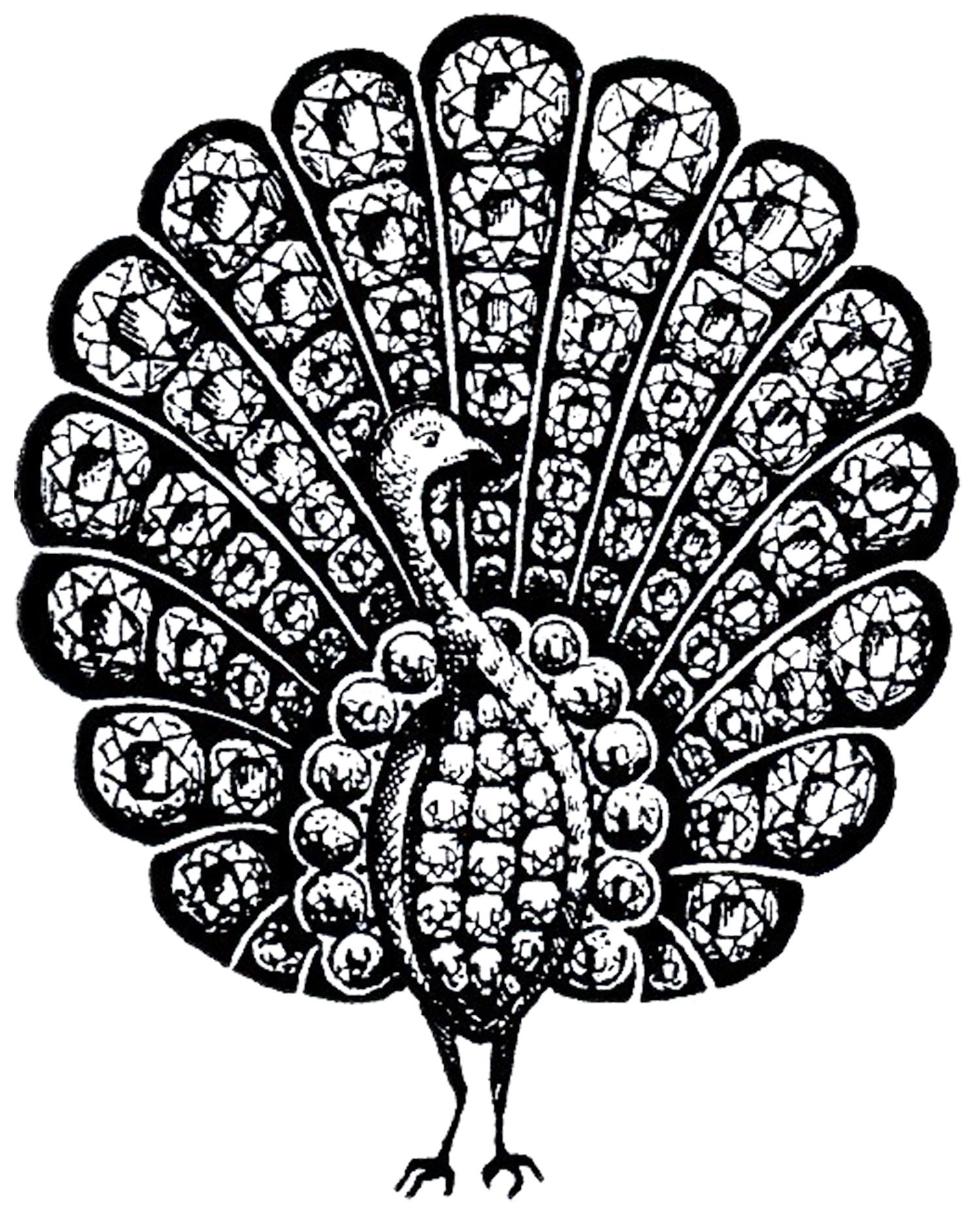 Vintage Peacock Jewelry Image
