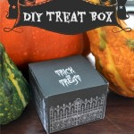 pin_treat_box