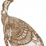 Antique-Turkey-Image-GraphicsFairy-thumb