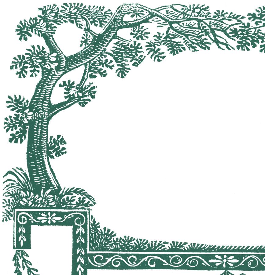 Free Antique Labels - Trees - 4 Colors