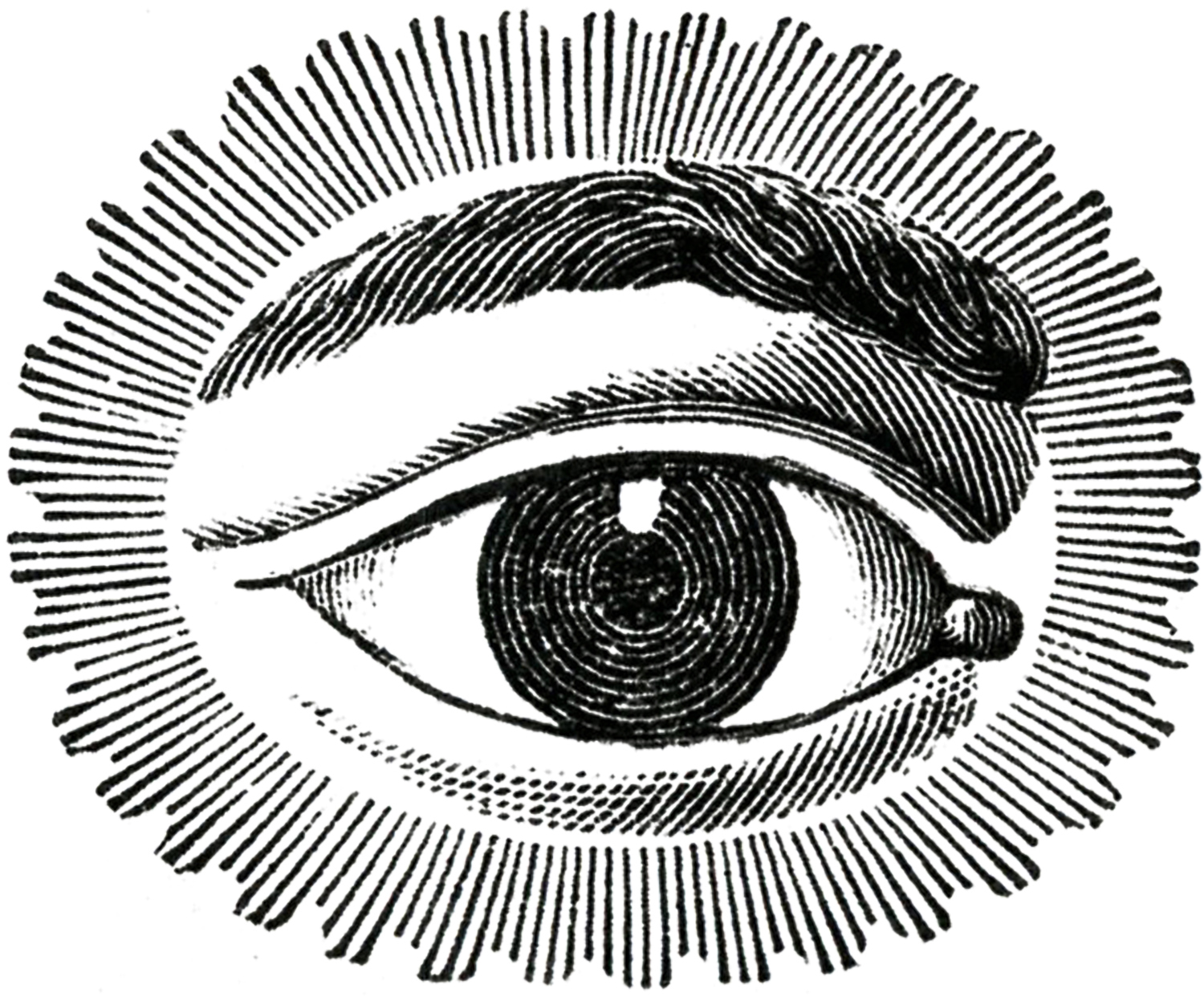 Free Public Domain Image Watching Eye