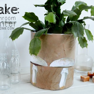Make a Botanical Mushroom Planter