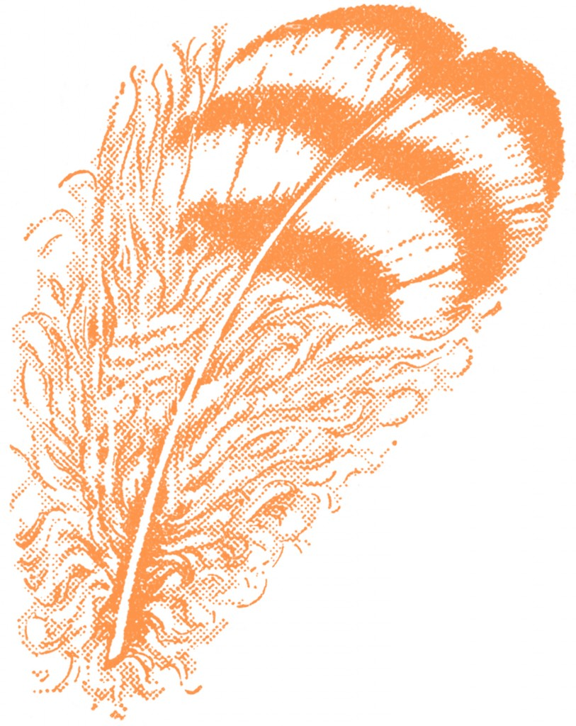 Vintage Feather Clip Art