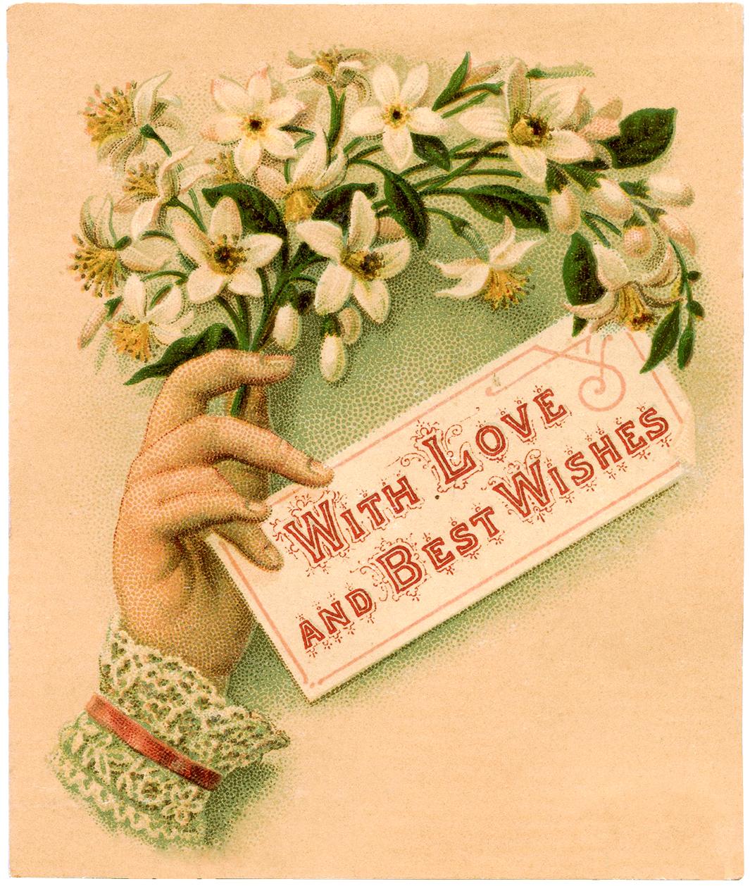 Vintage Ladies Hand Image