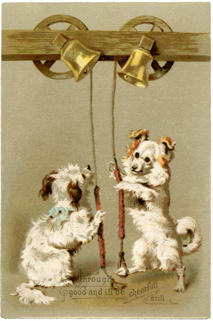 Christmas Dogs Picture