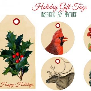Free Printable Tags for Christmas