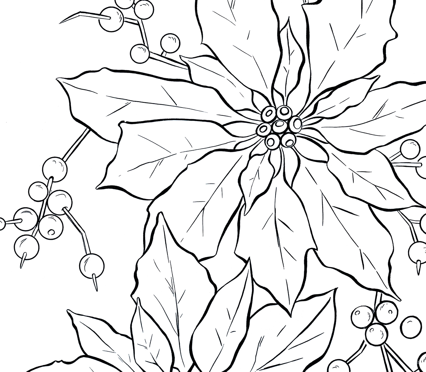 Line Art Graphics : Poinsettia black and white clip art pixshark