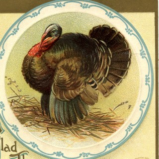 Vintage Thanksgiving Turkey Image