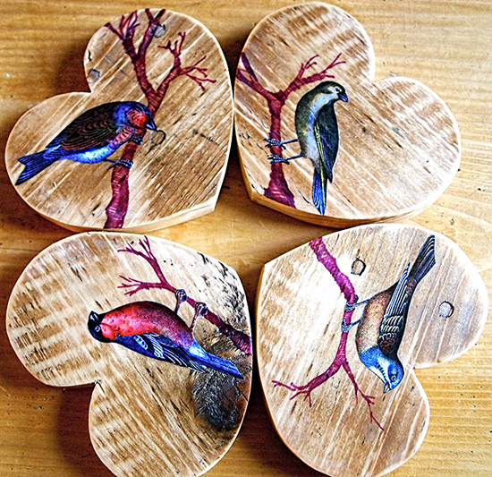 DIY Bird Coasters