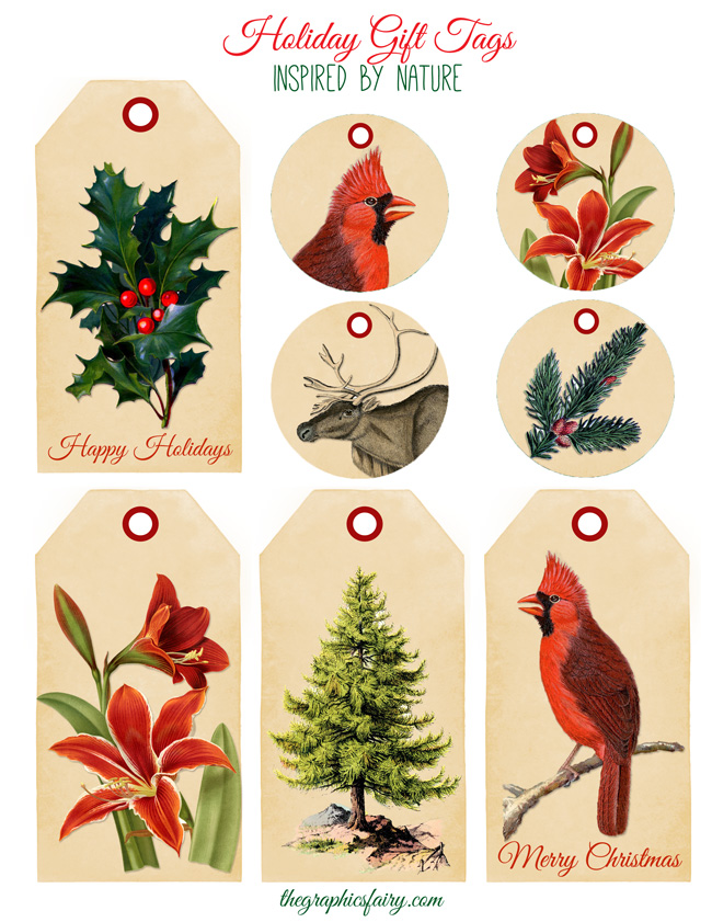 Free red cardinal bird christmas gift tag
