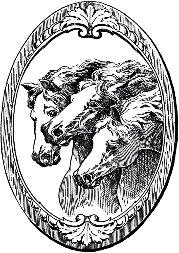 Vintage Horse Illustrations
