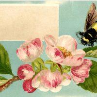Free Bumblebee Label