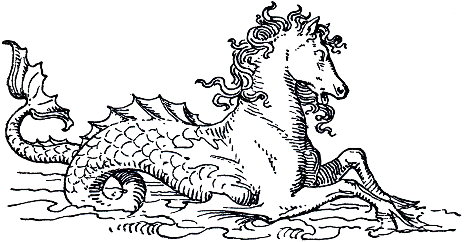 Mythical Sea Horse Image The Graphics Fairy