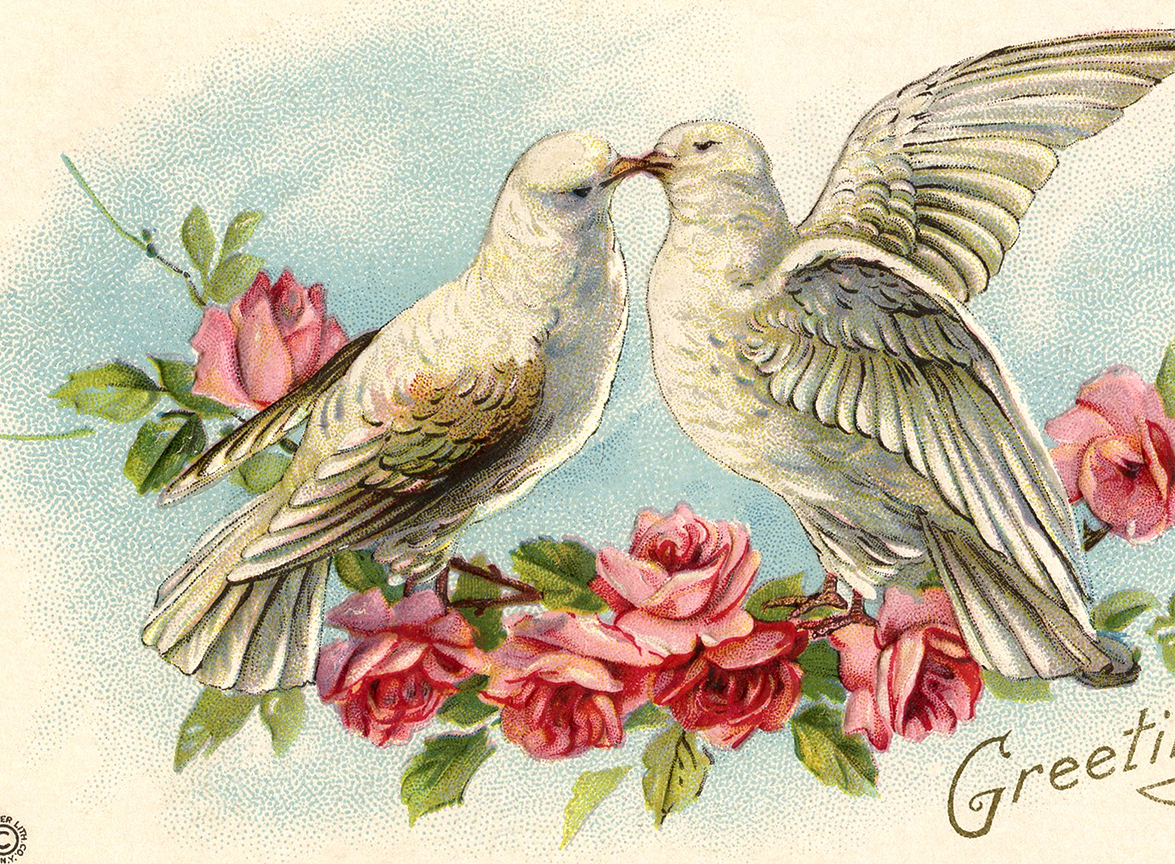 Valentine S Day Vintage Toys : Old valentine picture doves and roses the graphics fairy
