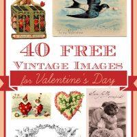 40 Best Free Valentine Images