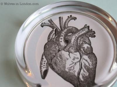 heart-anatomy-paperweight
