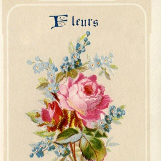 Lovely French Fleurs Image