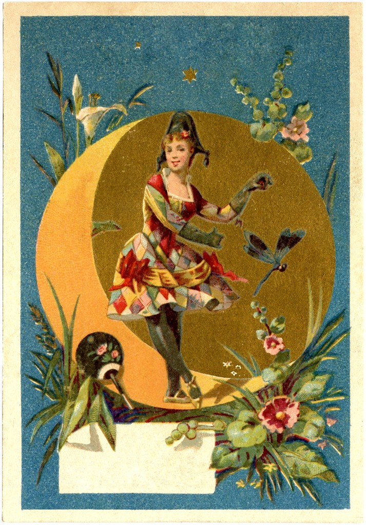 Harlequin Lady Dancer Image