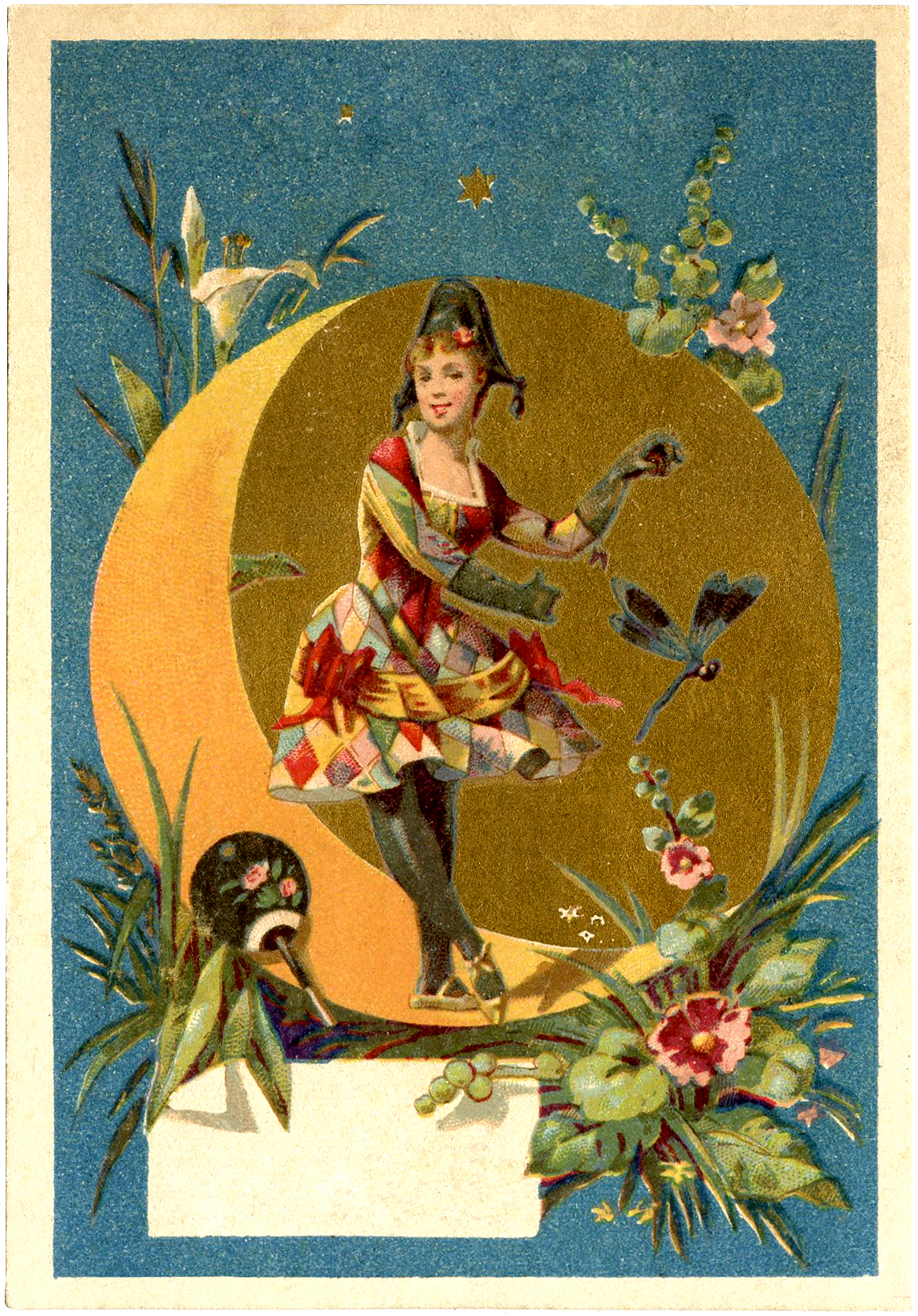 harlequin lady dancer image