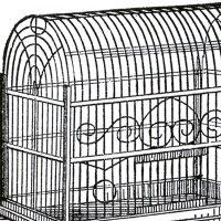 Vintage Bird Cage Image