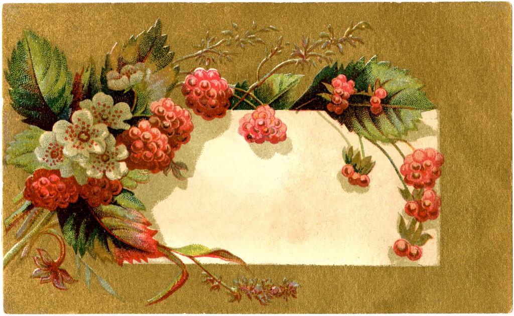 Vintage Raspberry Label