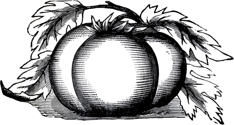 Public domain art images