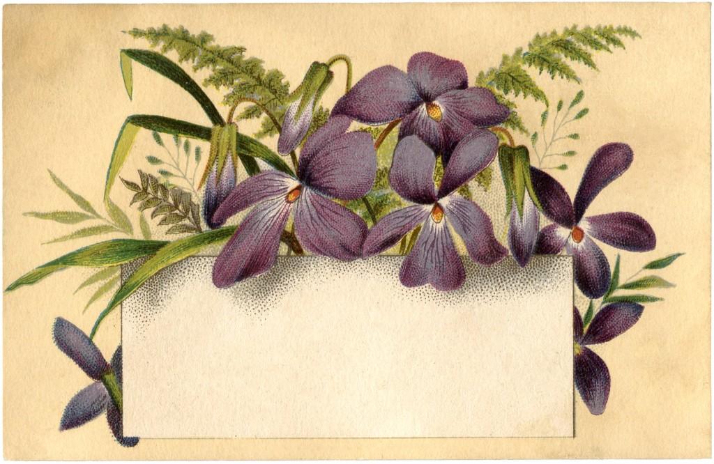 Violets Flower Label