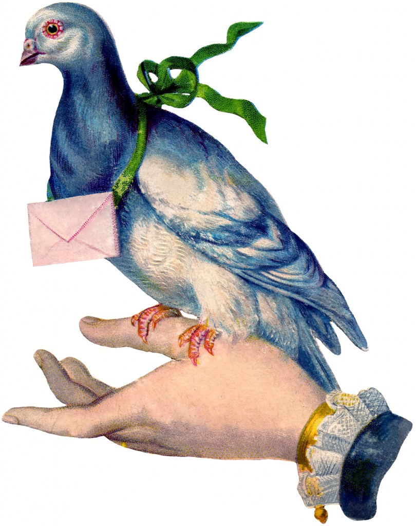 Carrier Pigeon Image With Letter The Graphics Fairy