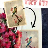 Diy-Art-with-Printed-Graphic-Images