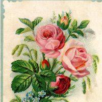 Pretty Flower Bouquet Picture