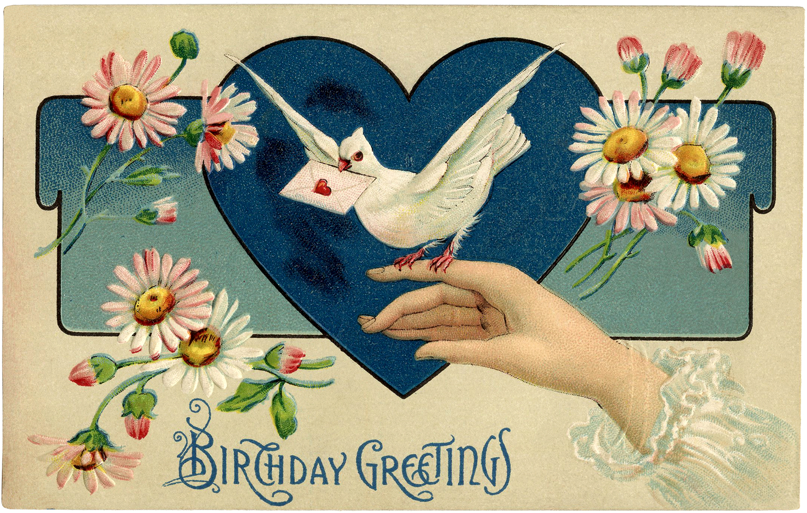 This Is A Pretty Vintage Birthday Illustration Shown Here Antique Postcard The Card Features Delicate Ladies Hand Perched On Her
