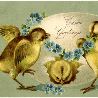 Vintage Easter Chicks Image