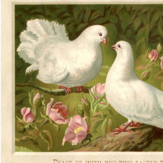 Vintage Easter Doves Picture