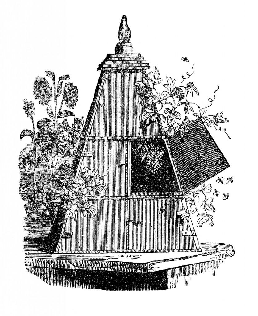 Vintage Wooden Beehive Image