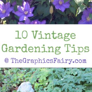 Vintage Gardening Tips