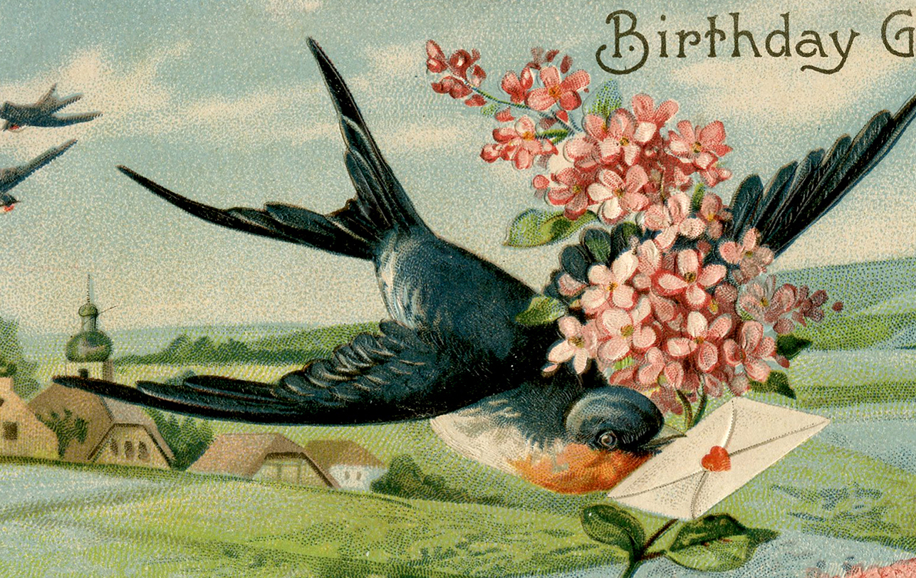 Birthday Swallow Image - Extra Pretty! - The Graphics Fairy