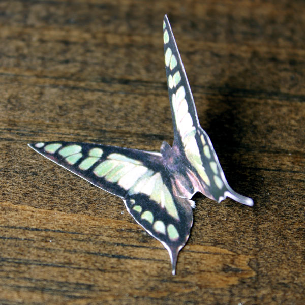 ButterflyClothespin-3
