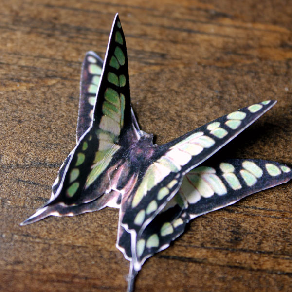 ButterflyClothespin-5